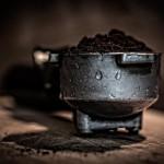 Jak využít kávovou sedlinu, tzv. lógr